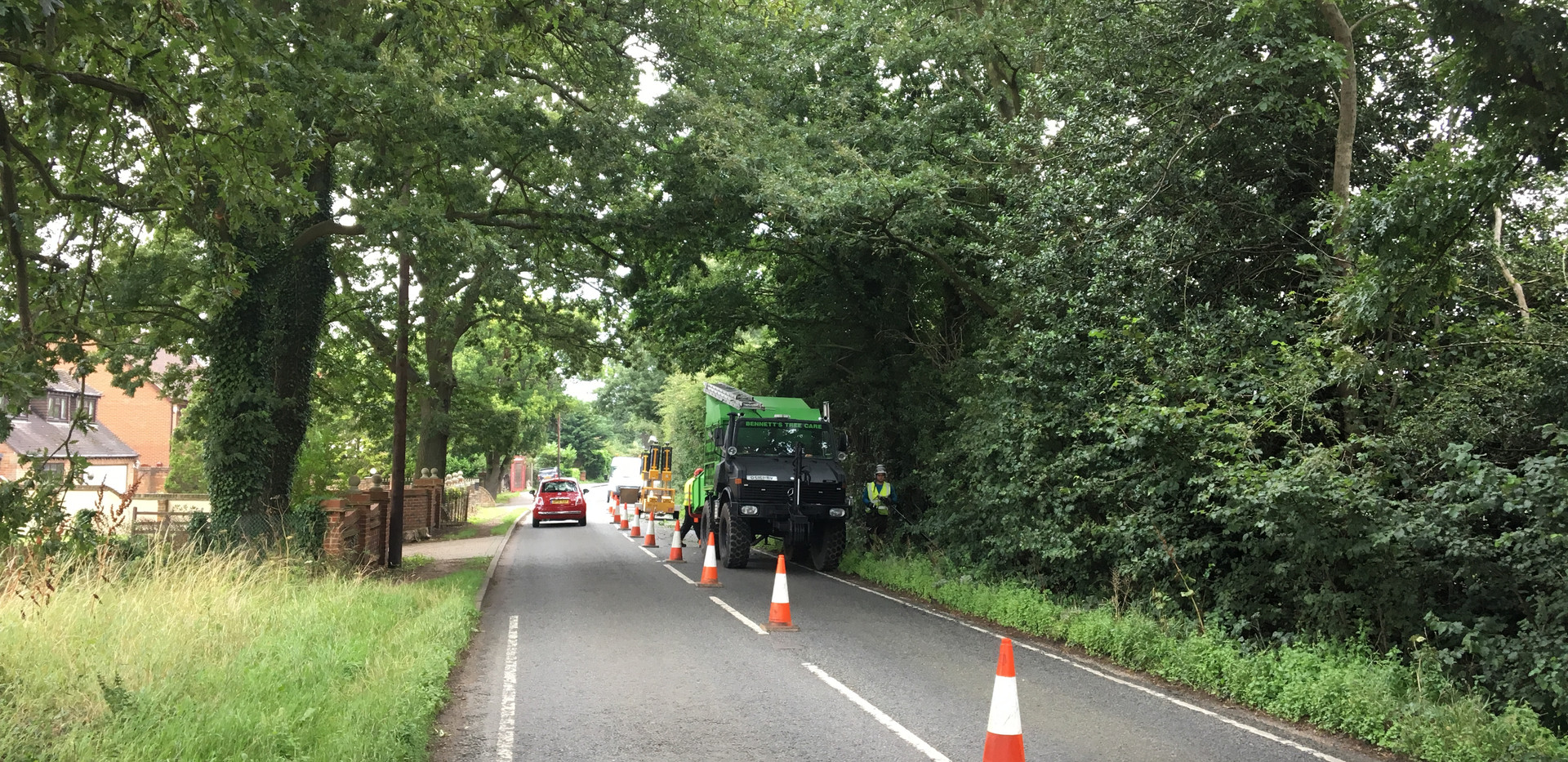 road side tree works