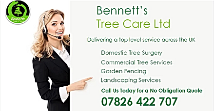 bennetts tree care phone number