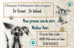 carte de visite clinique.png