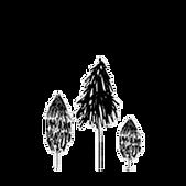 arbres.png