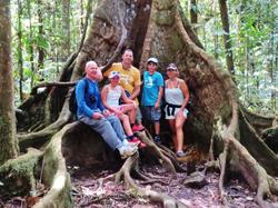 Family Tree Guadeloupe