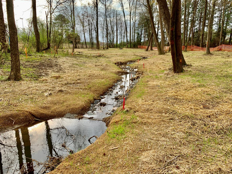 Restoring the Flow