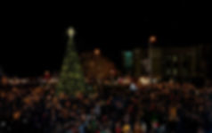 LUTN Tree Lighting hi res.jpg