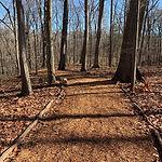 Cattail Creek Nature Trail.jpg