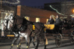LUTN Horse and Carriage.jpg