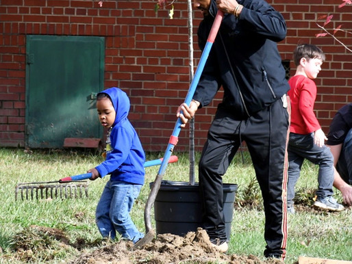 Is Hopewell Urban Enough for an Urban Orchard?