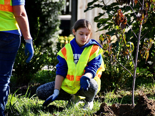 100 Trees for Hopewell