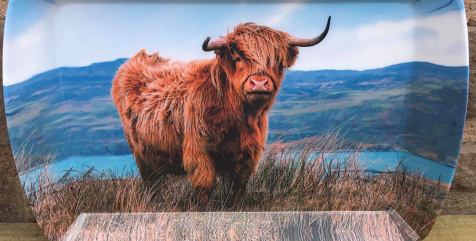 Highland Cow Snack Tray