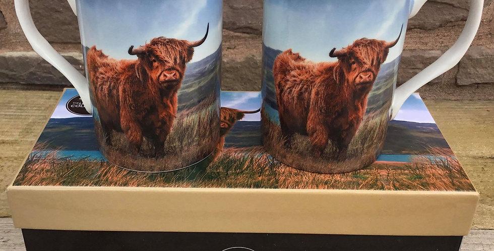 Highland Cow Boxed Mugs