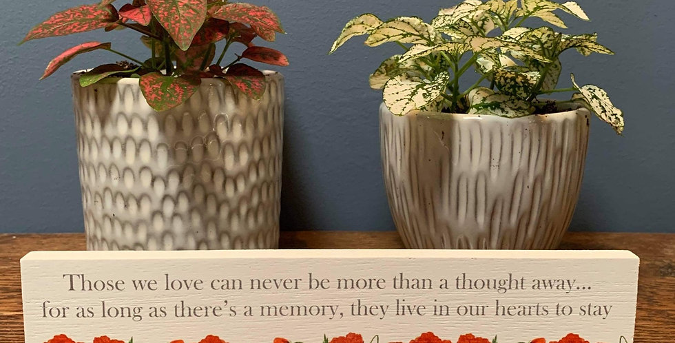 Poppy standing plaque - 'Those we love can never be more than a thought away...'