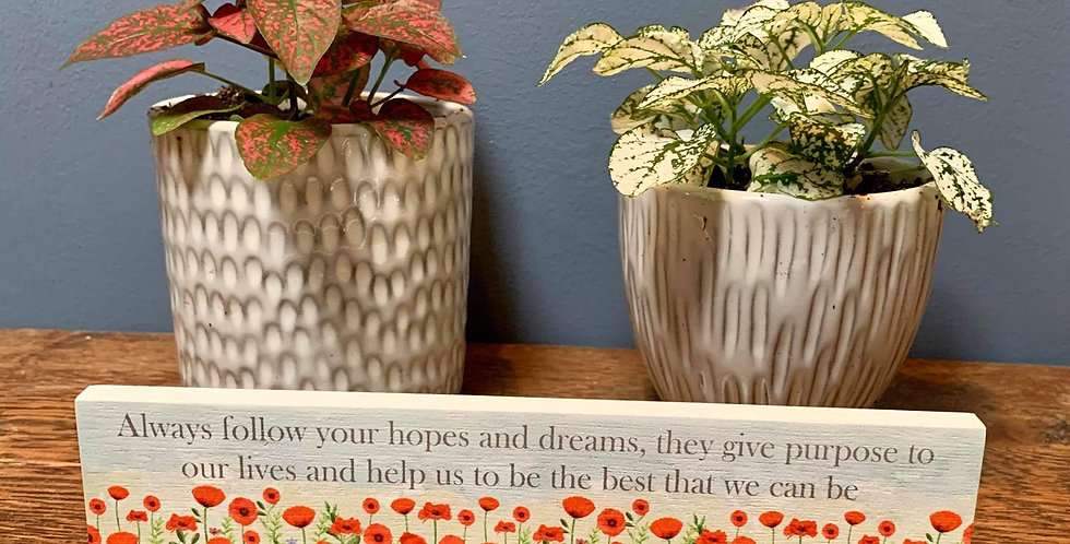 Poppy standing plaque - 'Always follow your hopes and dreams  ...'