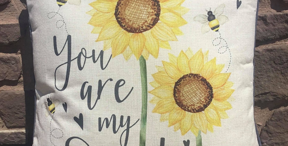 You are my Sunshine cushion 45x45