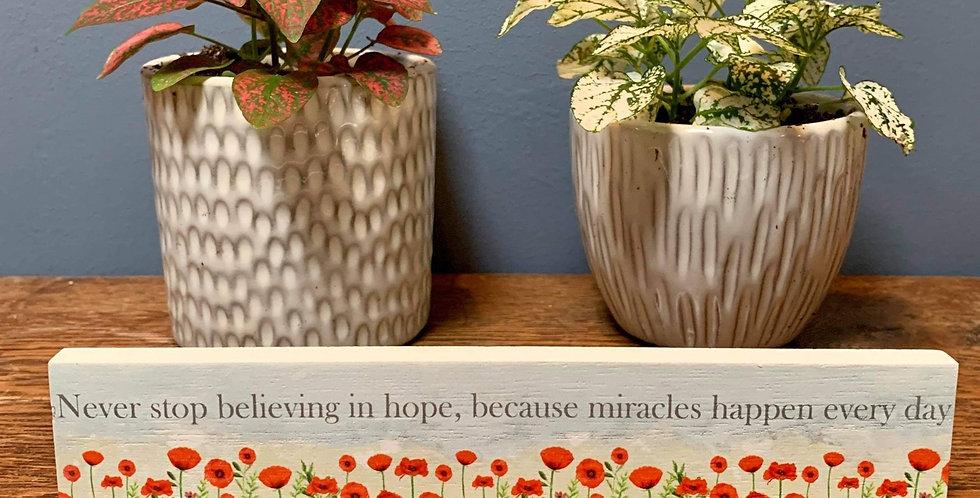 Poppy standing plaque - 'Never stop believing ...'