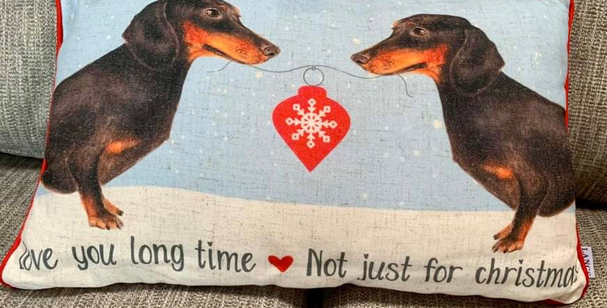 Sausage Dogs Cushion