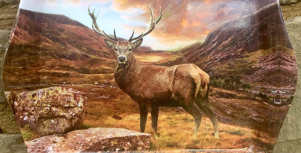 Stag Snack Tray (in glen