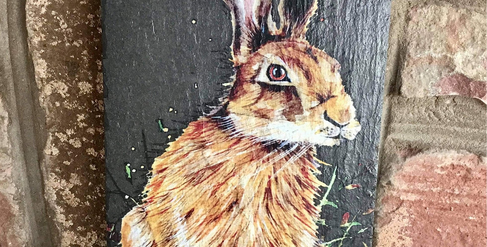 Hare hanging slate plaque