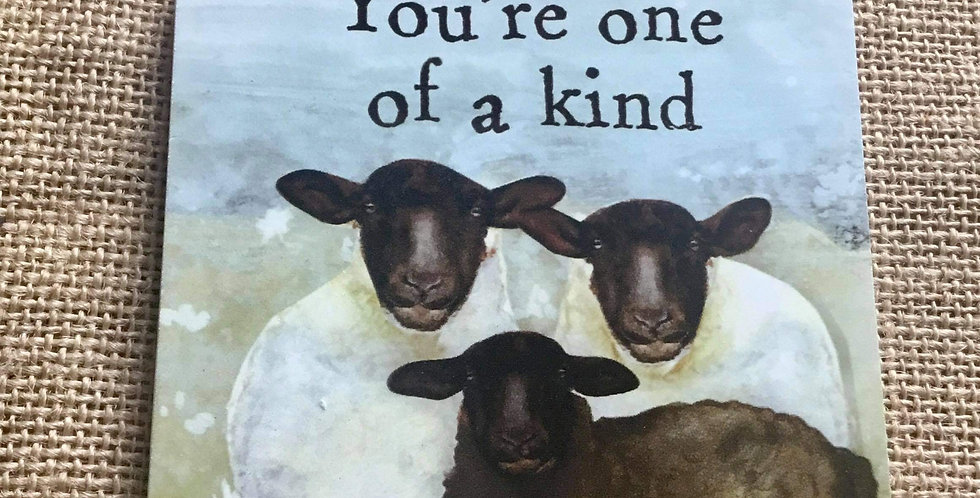 Sheep Plaque - You're one of a kind