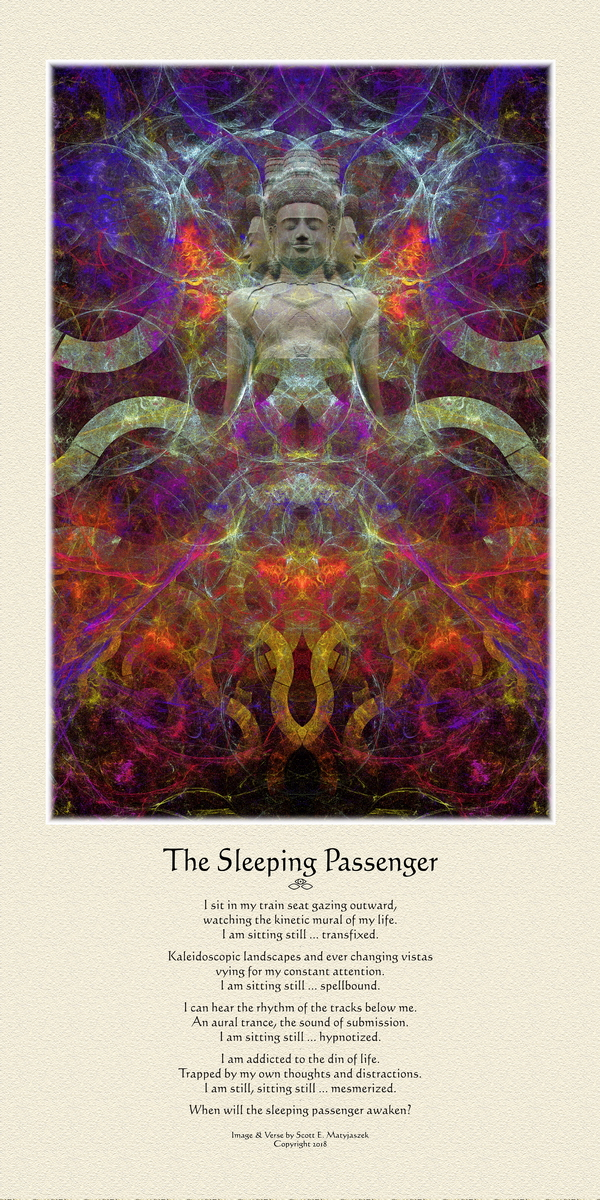 The Sleeping Passenger