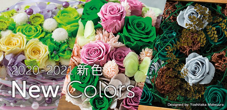 Banner-trend colour 01.jpg