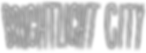 Brightlight City White Logo.png