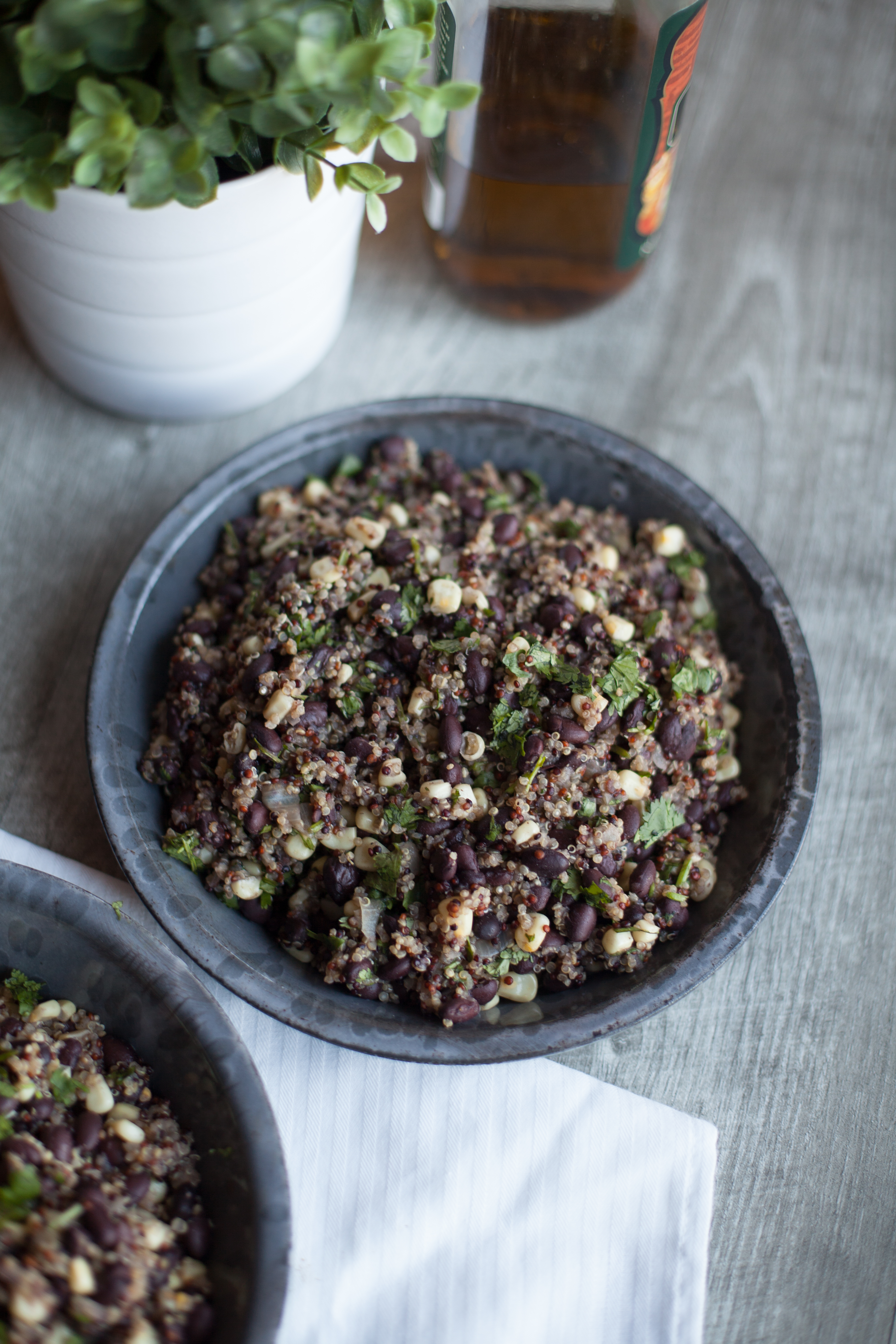CEM bean quinoa SELECTS-8290