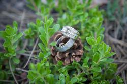 Miller + Dressler Wedding FINAL-9496
