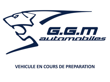 RENAULT SCENIC 3 1.9 DCI 130 CV EXPRESSION