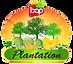BAP_Plantation.png