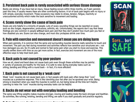 basic facts on low back pain - a recent article