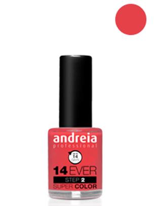 Andreia Verniz 14 EVER, Cor 5