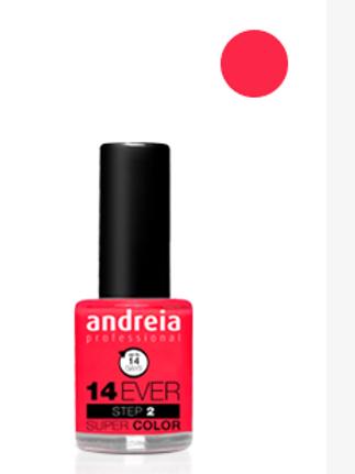Andreia Verniz 14 EVER, Cor 1