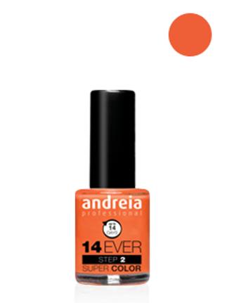 Andreia Verniz 14 EVER, Cor 12
