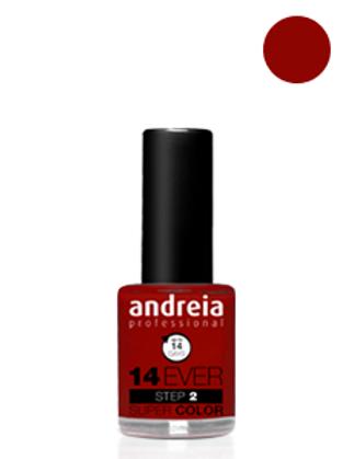Andreia Verniz 14 EVER, Cor 4