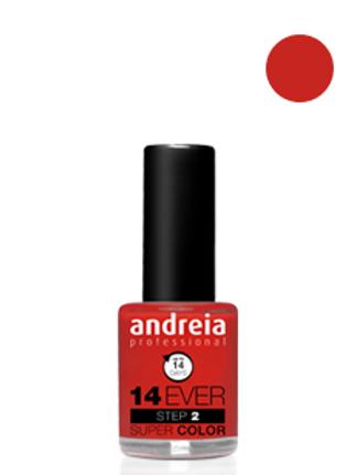 Andreia Verniz 14 EVER, Cor 3
