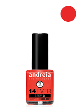 Andreia Verniz 14 EVER, Cor 14