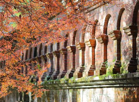 晩秋の南禅寺水道橋と永観堂