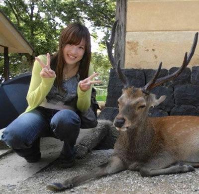 京都 整体 | 京都カイロプラクティック研究所(あんじゅ庵)就職を機に京都カイロ研究所を卒業