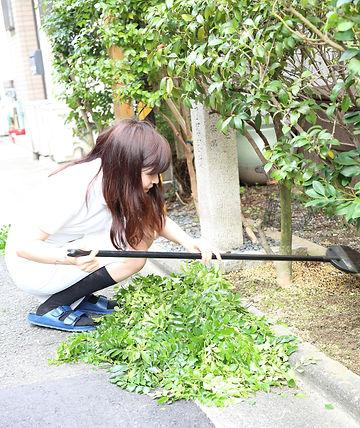 お庭の掃除 | あんじゅ京都カイロプラクティック研究所 | 日本