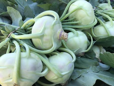 🛵 Nouveaux légumes, nouvelles idées recettes !!!🥘