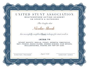 NICOLAS SHOOK certificate1.jpg