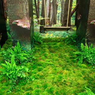 scenografia zielona