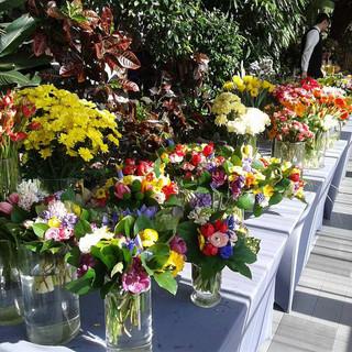 event kwiatowy