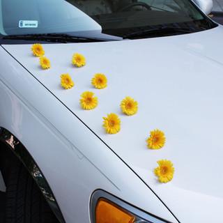 dekoracja samochodu głowkami gerber
