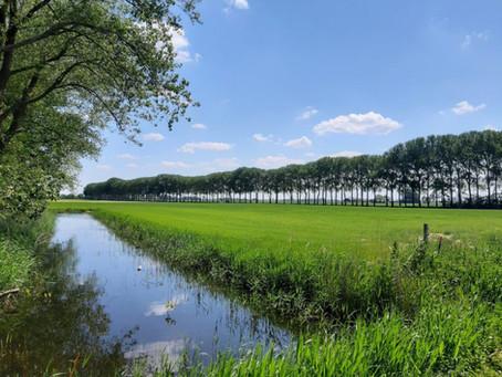 Mee naar buiten! Drie prachtige wandelingen in Nederland