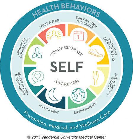 osher wheel of health behaviors