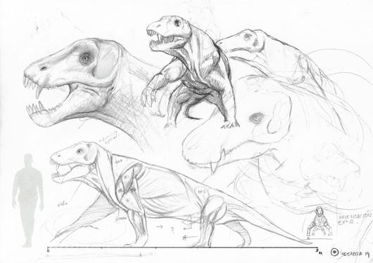 Anteosaurus study.jpg