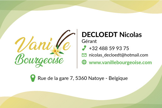 vanillebourgeoise-cv-final.jpg