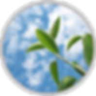 entreprise-formation-rond-150x150.png