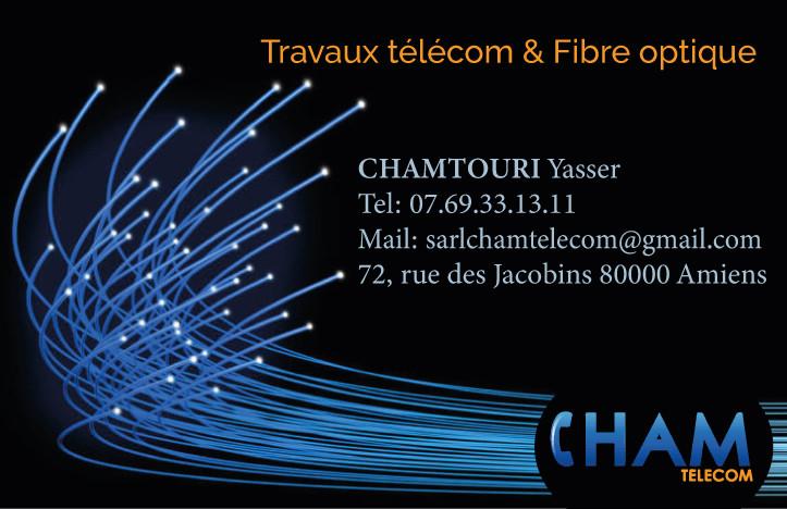cham-cv.jpg