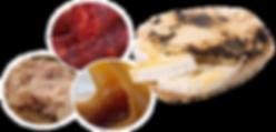 « le temps d'une fouée » c'est un four à bois ambulant. Notre souhait, vous faire partager un produit traditionnel encore peu connu.